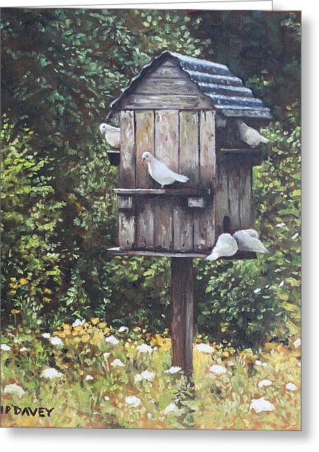 White Doves Using A Dovecote  Greeting Card by Martin Davey