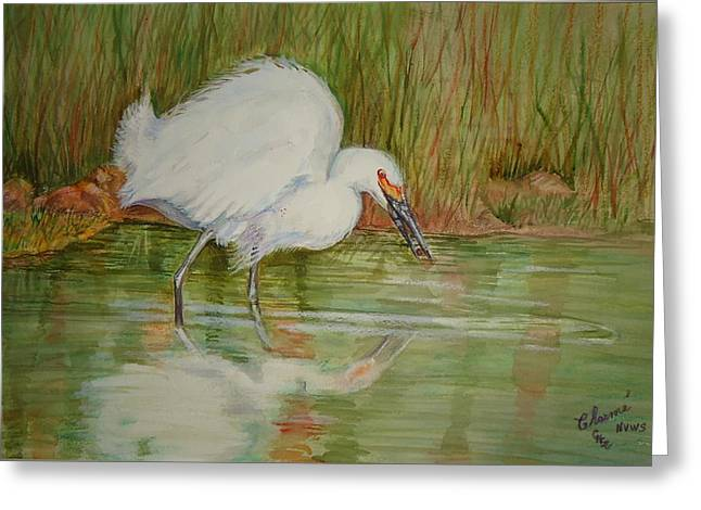 White Egret Wading  Greeting Card