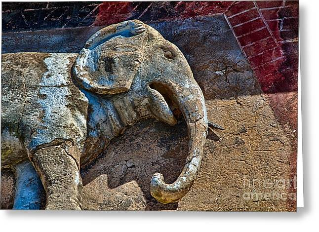 White Elephant Greeting Card by Ken Williams