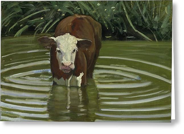 Greeting Card featuring the painting White Face Herford In The Pond by John Reynolds