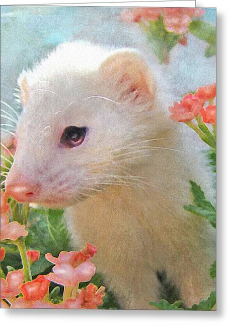 White Ferret Greeting Card