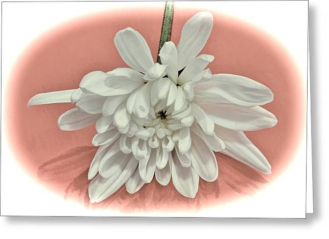 White Flower On Pale Coral Vignette Greeting Card