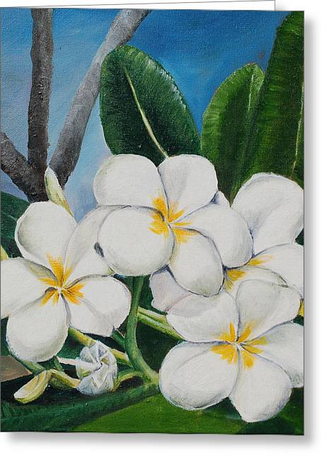 White Flower Greeting Card