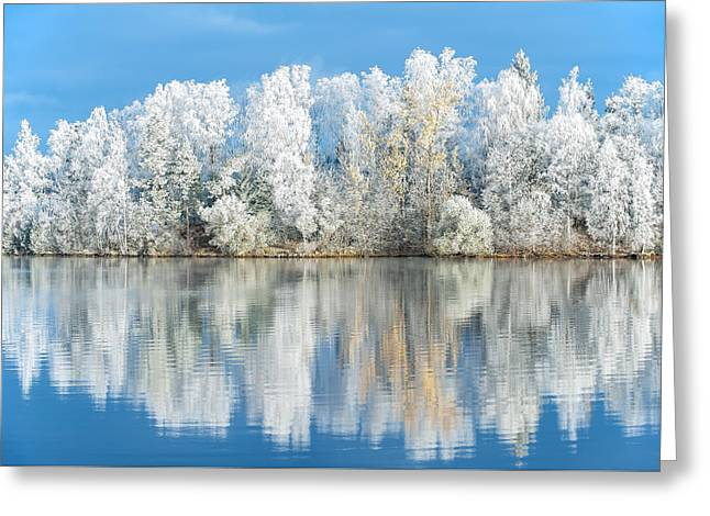 White Frost Greeting Card