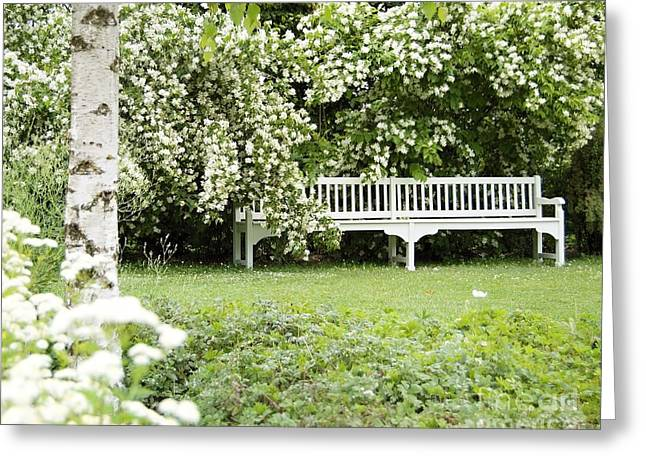 White Garden Iv Greeting Card