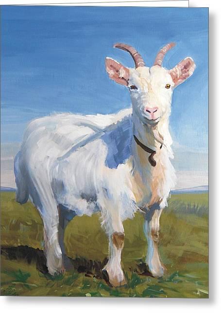 White Goat Greeting Card
