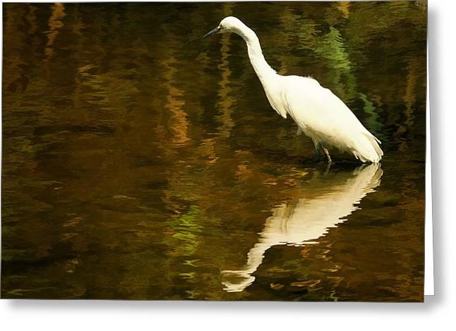 White Heron Greeting Card by Dick Wood