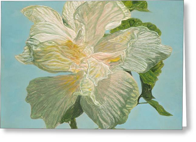 White Hibiscus Greeting Card by Michael Allen Wolfe