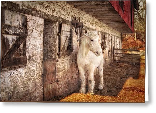 White Horse By An Old Barn Greeting Card by Carolyn Derstine