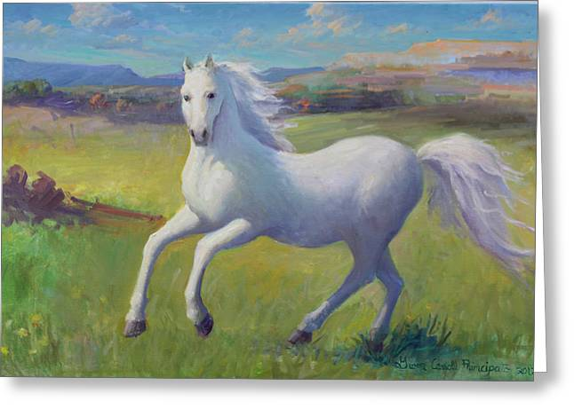White Horse Greeting Card by Gwen Carroll