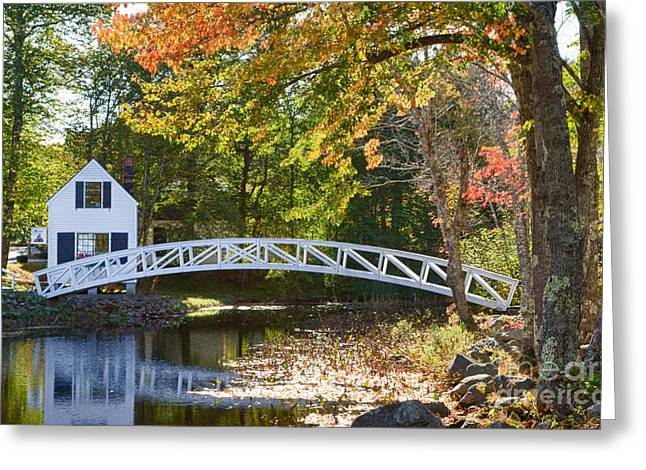 White House With Curved Bridge Greeting Card
