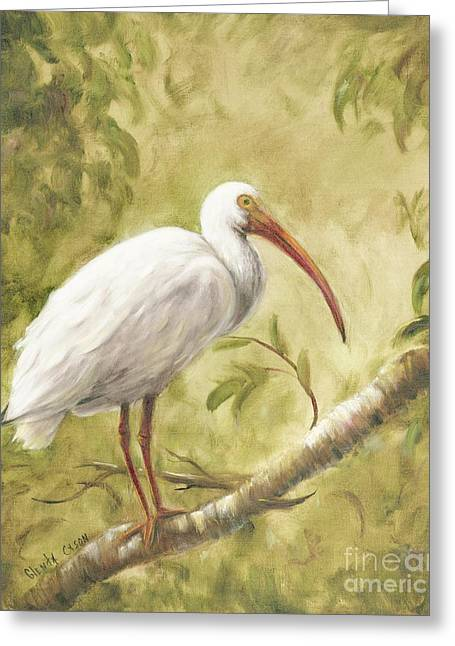 White Ibis Greeting Card