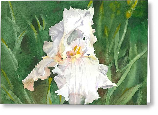 White Iris Greeting Card by Spencer Meagher