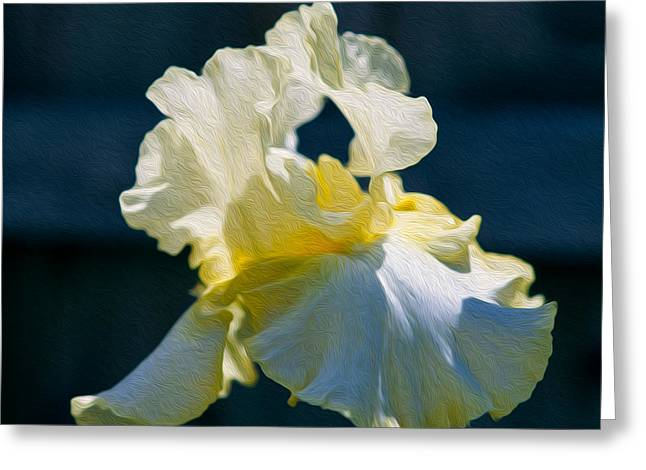 White Iris With Yellow Greeting Card by Omaste Witkowski
