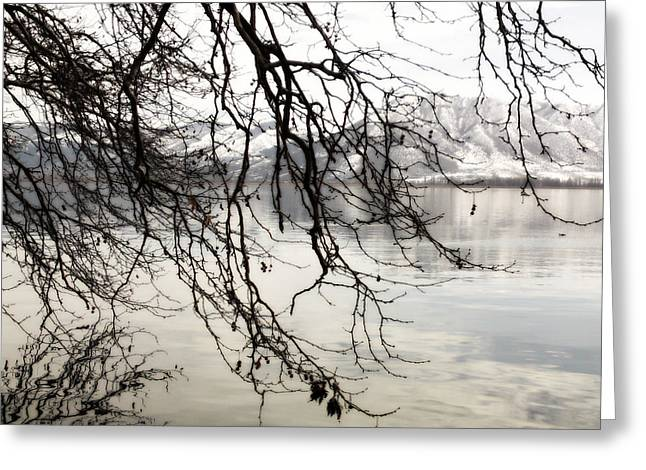 White Lake Greeting Card by Persephone Artworks