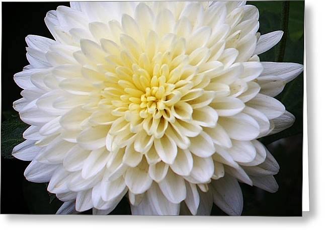 White Lighting Greeting Card by Bruce Bley