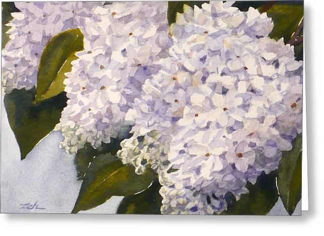 White Lilacs Greeting Card by Janet  Zeh