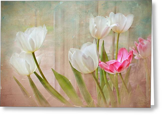White Lily Show Greeting Card