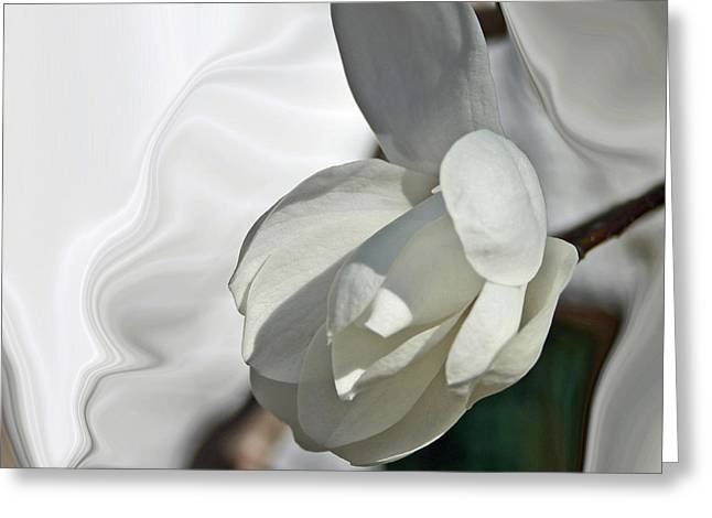 White Magnolia Series 510 Greeting Card