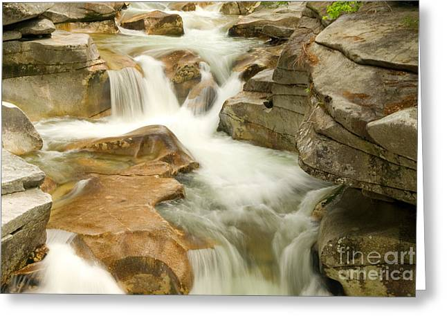 White Mountain Stream Greeting Card by Alana Ranney
