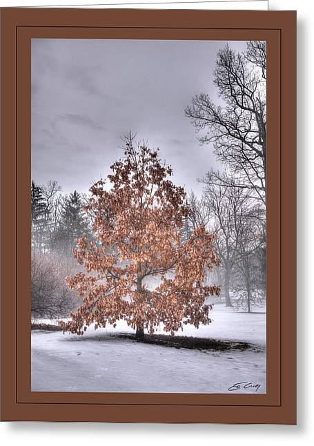 Greeting Card featuring the digital art White Oak In Fog  Framed by Ed Cilley