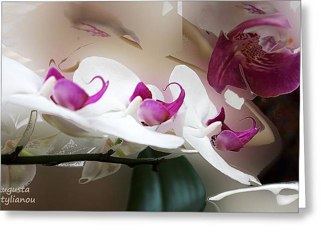 White Orchid Branch Greeting Card by Augusta Stylianou