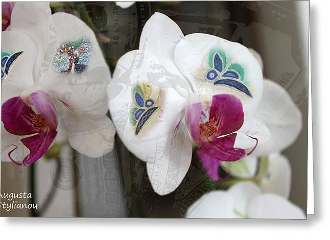 White Orchids And Butterfies Greeting Card by Augusta Stylianou