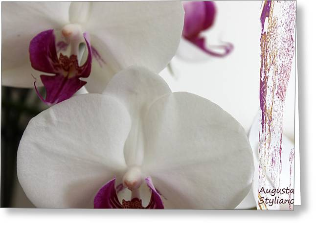 white Orchids and Landscape Greeting Card by Augusta Stylianou