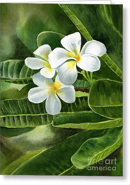 White Plumeria Flowers Greeting Card by Sharon Freeman