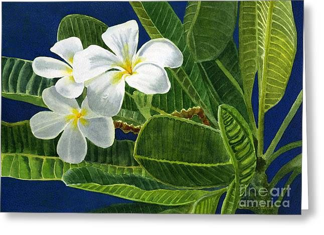 White Plumeria Flowers With Blue Background Greeting Card by Sharon Freeman
