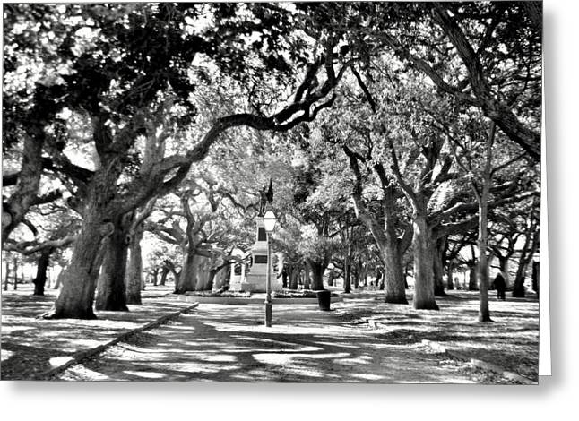 White Point Gardens At Battery Park Charleston Sc Black And White Greeting Card