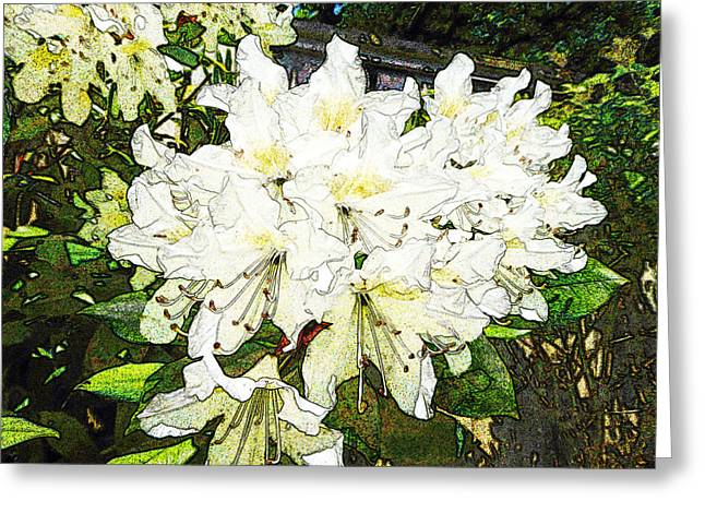 Greeting Card featuring the photograph White Rhodo Chalk by Laurie Tsemak