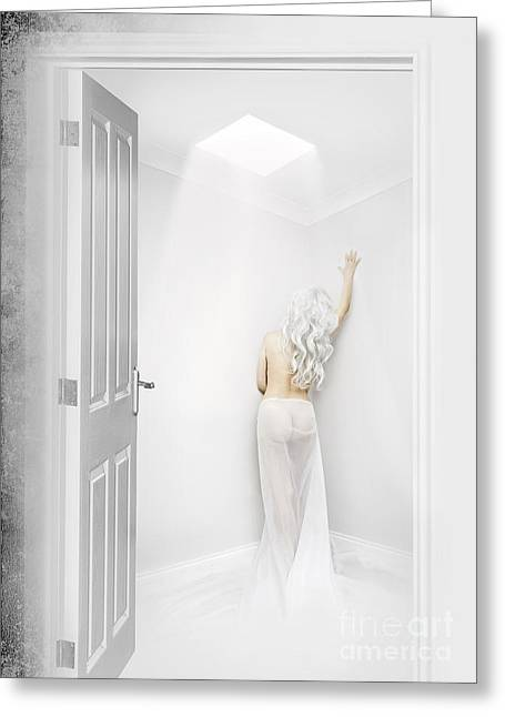 White Room Greeting Card by Svetlana Sewell