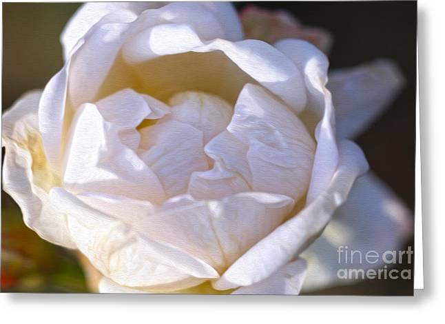 White Rose Greeting Card by Nur Roy