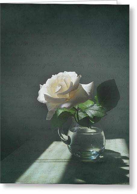 White Rose Still Life Greeting Card by Deborah Smith