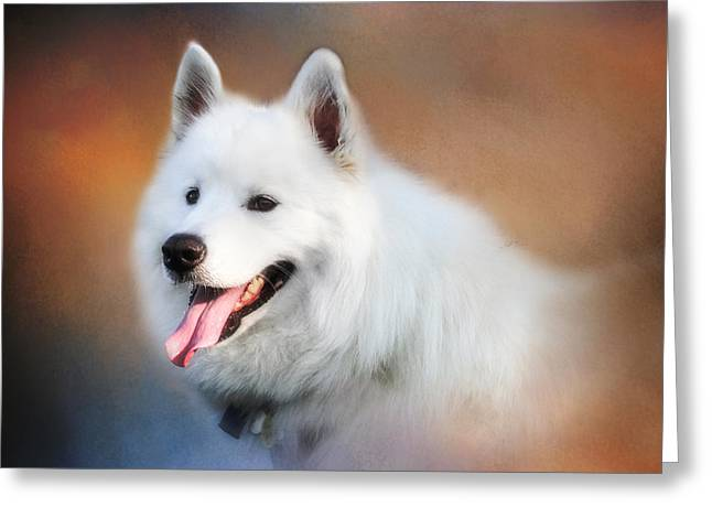 White Samoyed Portrait Greeting Card by Eleanor Abramson