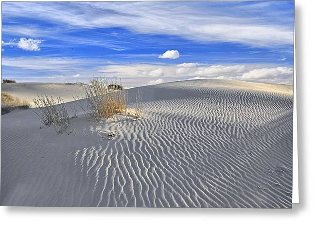 White Sand And Blue Sky Greeting Card by Wendell Thompson