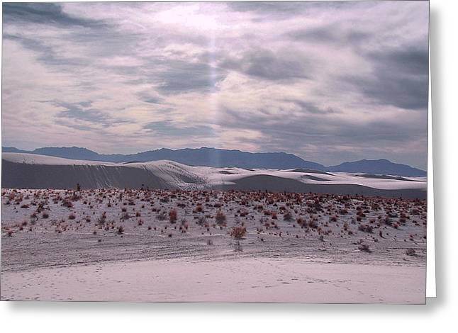 White Sand Greeting Card by William Norton