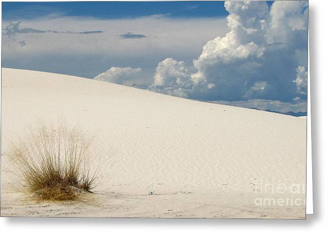 White Sands Blue And White Beauty Greeting Card by Marilyn Smith