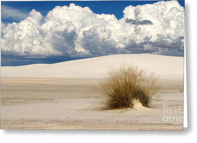 White Sands Cross Greeting Card by Marilyn Smith
