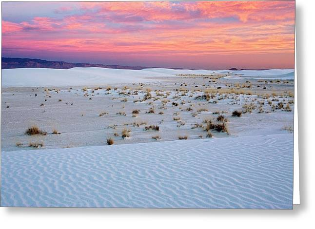 White Sands National Monument Greeting Card by Bob Gibbons/science Photo Library