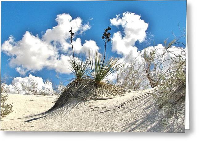 White Sands National Monument Greeting Card by Marilyn Smith