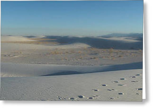 White Sands New Mexico Panorama 02 Greeting Card by Gregory Dyer