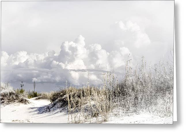 White Sands Winter Greeting Card