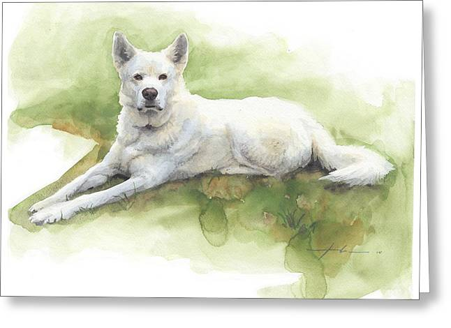 White Sled Dog Lying On Grass Watercolor Portrait Greeting Card by Mike Theuer