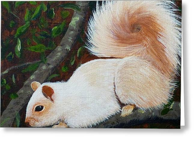 White Squirrel Of Sooke Greeting Card