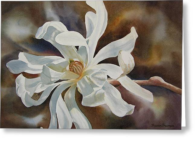 White Star Magnolia Blossom Greeting Card by Sharon Freeman
