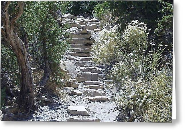 White Steps Greeting Card