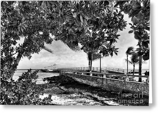 White Street Pier Key West Greeting Card by Joan  Minchak