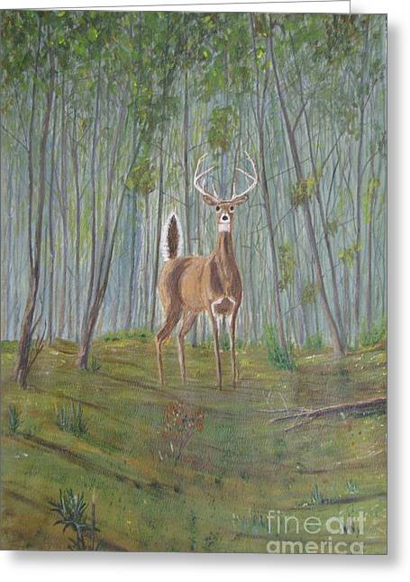 White-tailed Deer - Impressionistic Greeting Card by Dana Carroll